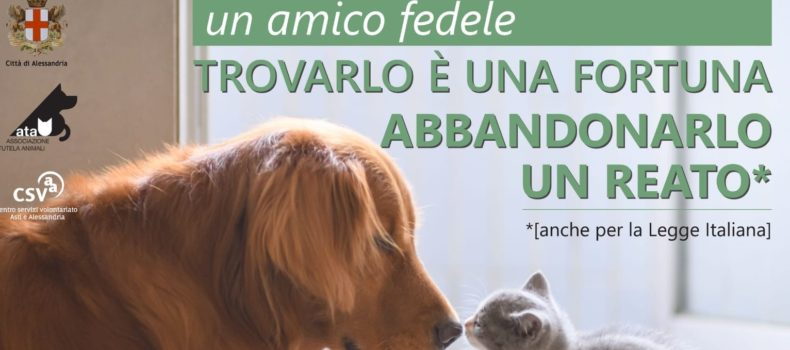 Campagna contro l'abbandono degli animali