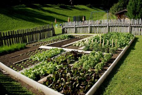 OK a spostamento per curare gli orti
